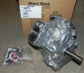Briggs & Stratton Short Block - Part No. 698178 NKA 698173