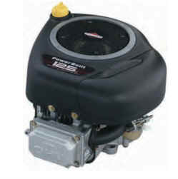 Briggs & Stratton 219807-3402 12.5 HP Powerbuilt OHV