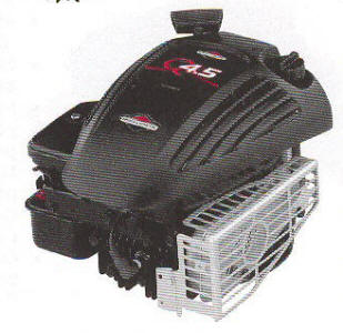 Briggs & Stratton 10G900 Series Engine