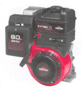 Briggs & Stratton 202400 Series Engine