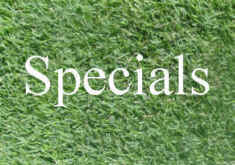 Engine and Parts Specials